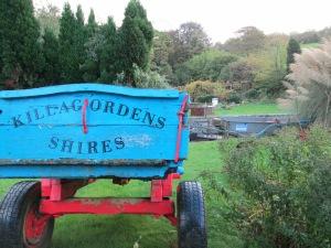 Killagorden Shires