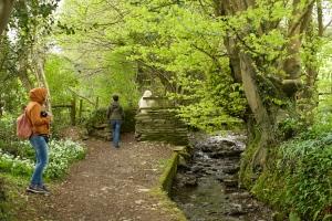 Passeggiata tra Garden    House  e Buckland Monachorum
