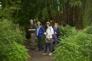 Garden House, la bamboosiere