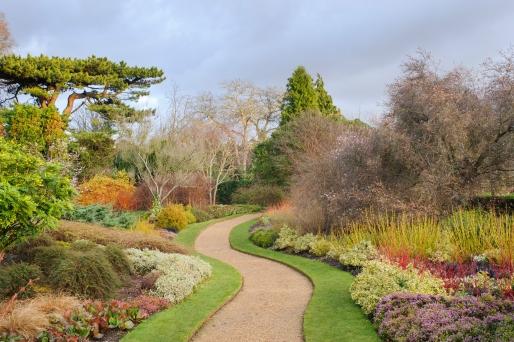 Cambridge Winter Garden