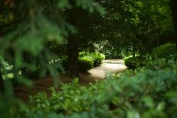 rousham pond