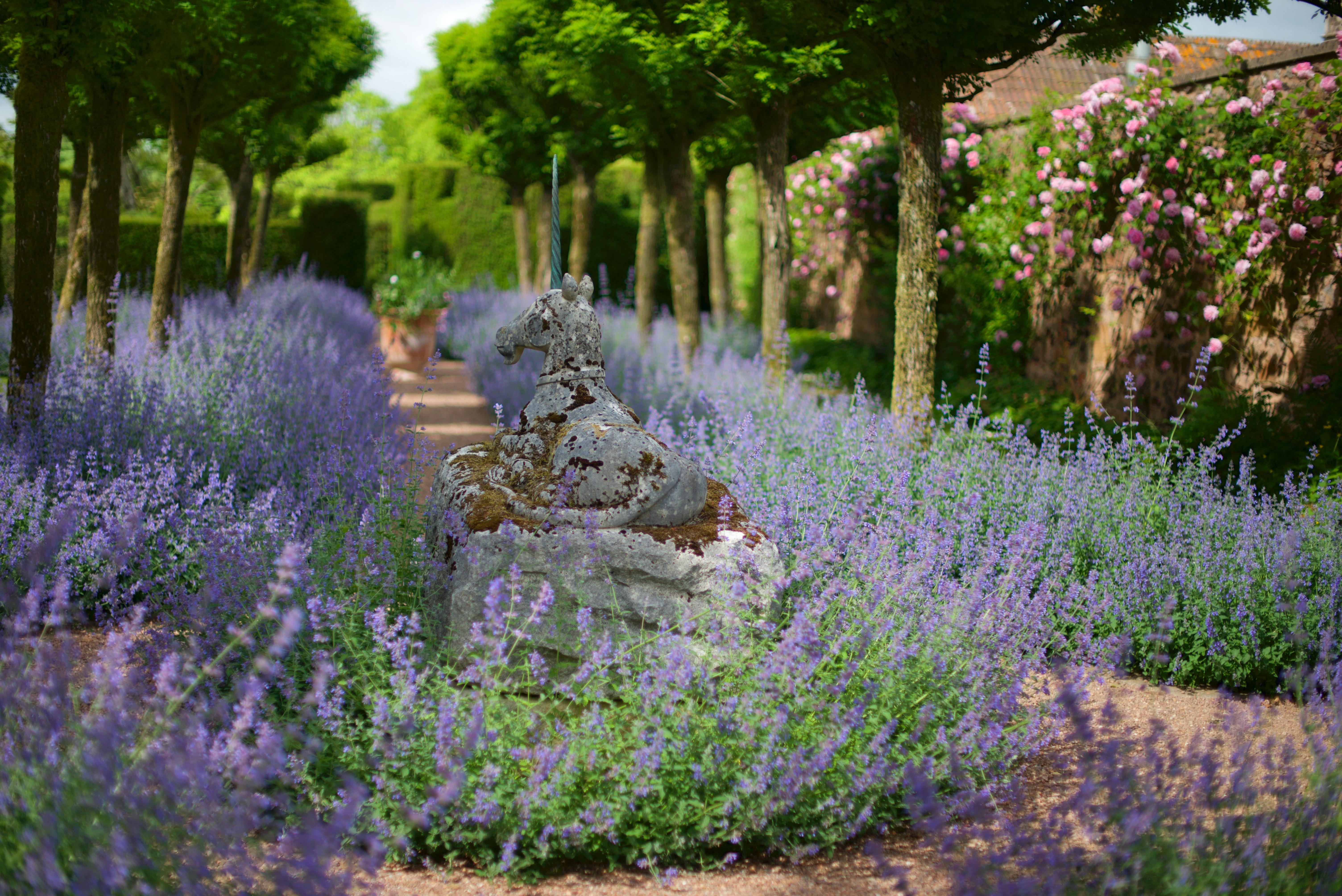 Giardini viaggi floreali for Giardini inglesi